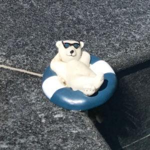 Thermomètre piscine flottant ours
